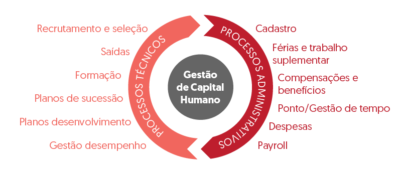 Gestão do Capital Humano